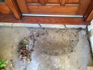 """Sweep up the leaves and other debris from around your front door by sweeping them toward the door, not away from it. To find out why, get my MP3 recording of """"A Fresh Start"""" by clicking on my signup box on my website pages."""